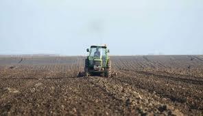 Srbija: Suficit agrara u 2014. iznosio 1,4 milijarde dolara