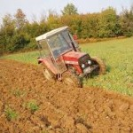 Obilne padavine negativno utiču na usjeve u Srbiji