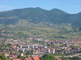 Peulić: Do petka plan konsolidacije ili prinudna naplata