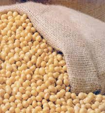 Modifikovana soja iz Brazila čeka na granici