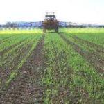 Krediti i osiguranje u poljoprivredi Srbije