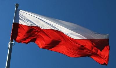 Poljska izvezla 2.700 tona sumnjive govedine u zemlje EU