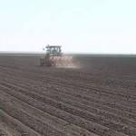 Padavine popravile zalihe vlage u zemljištu