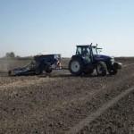 Što prije završiti prihranu ozimih strnih žita