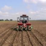 Odmah početi sjetvu kukuruza i soje