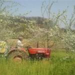 Ugljevik: Proljetna sjetva završena na 60 odsto planiranih površina
