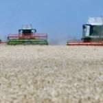 Hektar njive i do 20.000 evra