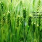 """Sutra otvaranje 13. Međunarodnog poljoprivrednog sajma """"Interagro 2014"""""""