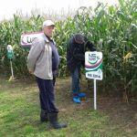 Dani polja kukuruza u Bihaću