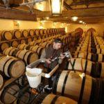 Agrokor u najveću hrvatsku vinariju uložio 22 miliona evra