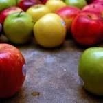 Trofimova: Moguća zabrana uvoza svih biljnih vrsta iz Srbije