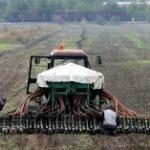 Veća podrška srpskom agraru tek za tri godine