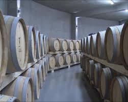 Prokuplje dobilo najveću vinariju na Balkanu!