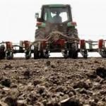 PD Semberija će zasijati više od 1.000 hektara