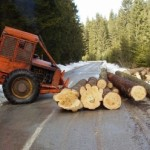 Šume RS uplatile milione opštinama