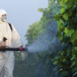 Evropi smetaju pesticide iz Srbije