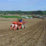 Ponovo zasijavanje kukuruza
