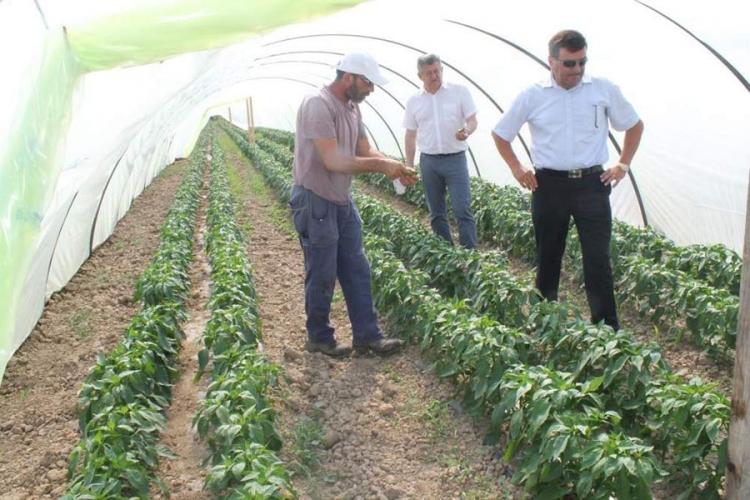 poljoprivredajpg