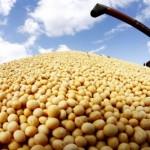 Srbiju uslovljavaju da prihvati GMO