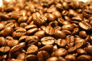 Za pola kilograma kafe rekordnih 1.029 dolara