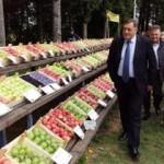 """Dodik otvorio manifestaciju """"Dani voća Potkozarje 2015"""""""