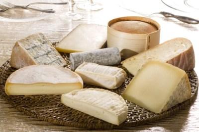 Pokrenut projekt unapređenja kapaciteta malih proizvođača Livanjskog sira