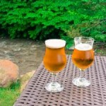 Sezonski posao: Putujete po svijetu i pijete pivo