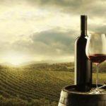 Francuzi i ove godine proizvode manje vina