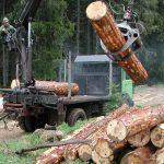 """Ministarstvo: """"Šume Srpske"""" krše zakon i friziraju izvještaje"""