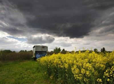 Dostupnost zemljišta za kupovinu i zakup najveći problem ratara iz EU