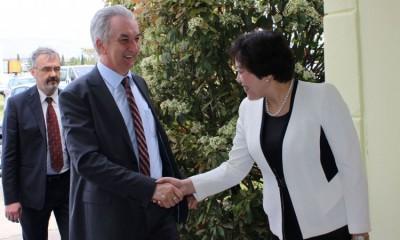 Ekonomska saradnja Kine i Bosne i Hercegovine sve bolja