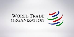 STO snizila prognozu rasta globalne trgovine za 2016.
