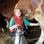 USK: Farmeri ne daju mlijeko za bagatelu