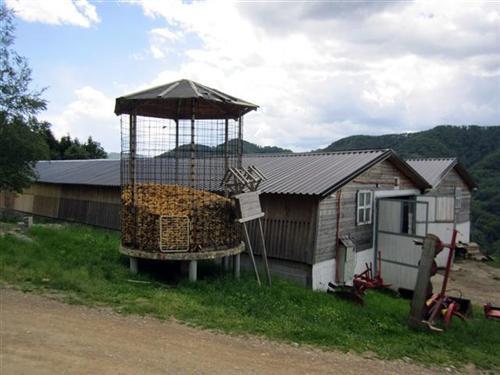 Japanci podstiču seoski turizam