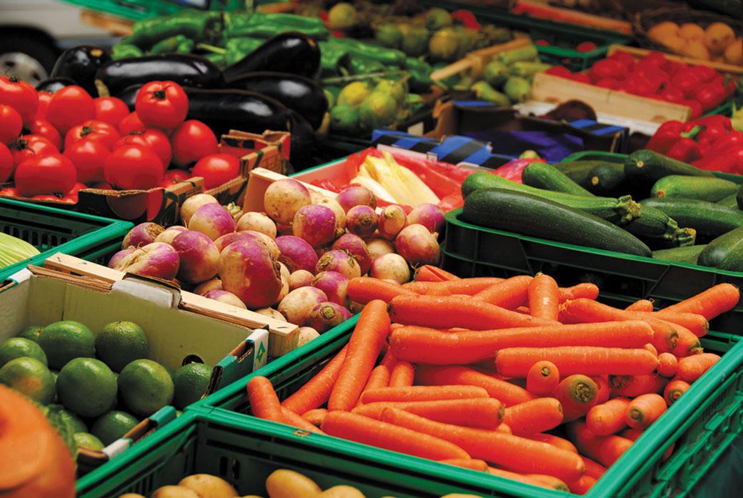 Sjemena skupa, povrća sve manje