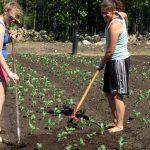 EBRD: Zarazvoj poljoprivrede i preduzetništva žena 3.000.000evra