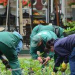 Stečaj spas za prezadužena komunalna preduzeća