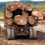 Drvoprerađivači opštine Sokolac ne odustaju od protesta