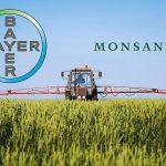 GMO (ne) ulazi na velika vrata u Evropu