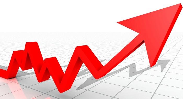 Usporava rast bh. ekonomije
