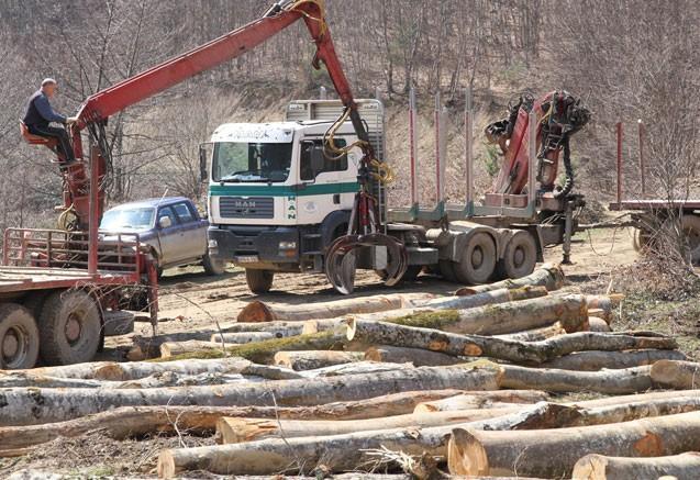 Rat za nabavku trupaca: Komisija nadzire raspodjelu