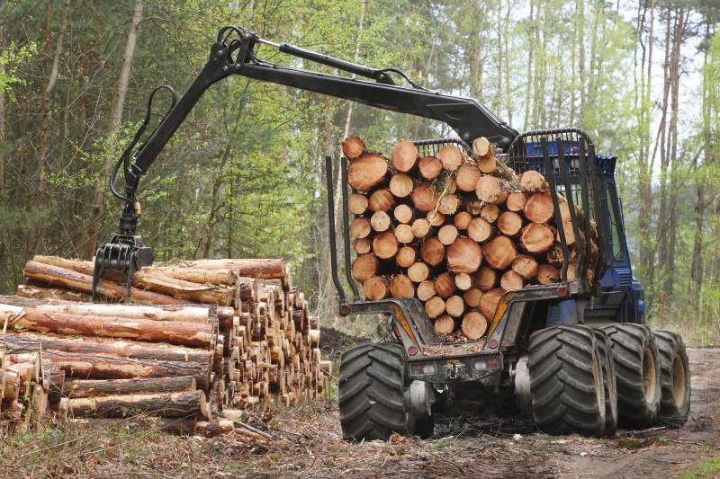 U trećem kvartalu smanjena proizvodnja šumskih sortimenata