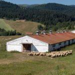 Razvoj zadruga doprinosi ostanku stanovništva na selima