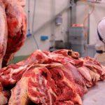 Iz BiH u Tursku izvezeno 6.100 tona mesa