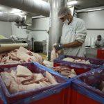 SAD pokreću akciju protiv zabrane američke govedine u EU