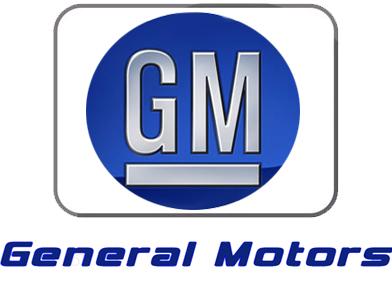 GM lansira deset električnih modela u Kini do 2020.
