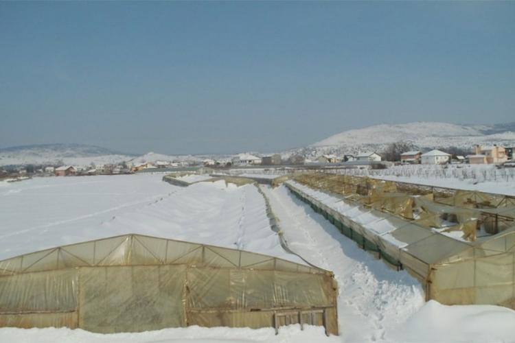Snijeg i niske temperature ratare utjerali u minus