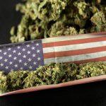 Kalifornija najveće svjetsko tržište marihuane