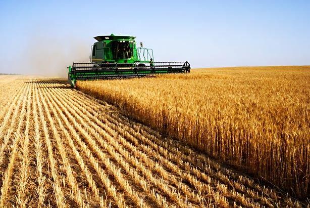 Ministarstvo poljoprivrede:Nastavljeni razgovori o podsticajima za razvoj poljoprivrede