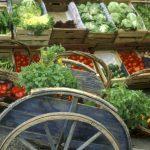 Očekivana vrijednost poljoprivredne proizvodnje 1,6 milijardi KM